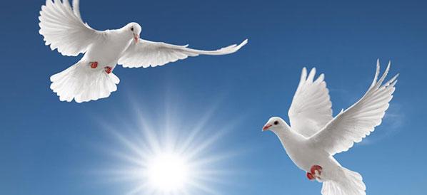 Символы птиц в репертуаре детского фольклорного ансамбля